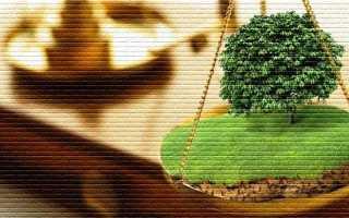 Определение порядка пользования земельным участком — что это и зачем нужно