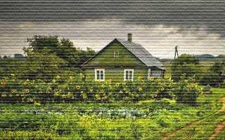Приобретательная давность на земельный участок: основания и порядок оформления