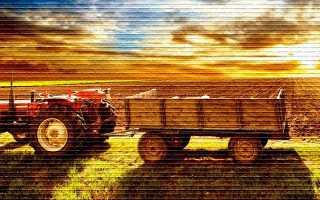 Можно ли купить землю сельхозназначения и как это сделать