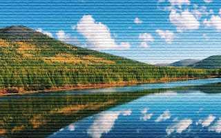 Дальневосточный гектар: как получить бесплатную землю
