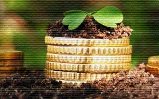 Как сдать земельный пай в аренду: порядок, договор