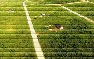 Как выкупить земельный участок из аренды в собственность