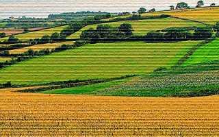 Что представляет из себя договор субаренды земельного участка