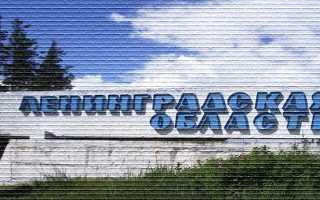 Программа «Ленинградский гектар» — что это такое, как получить участок земли