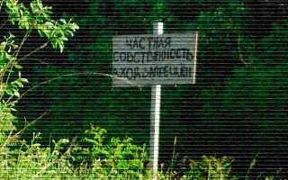 Регистрация права собственности на земельный участок — правила, порядок