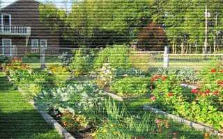 Что такое разрешенное использование земельного участка и какие бывают виды использования