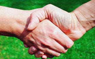 Типовая форма предварительного договора купли-продажи земельного участка