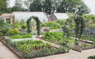 Особенности закона 217-ФЗ о садовых и огороднических товариществах