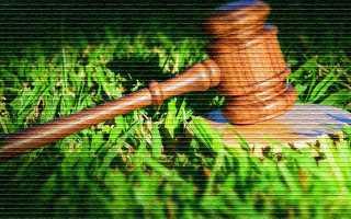 Понятие и признаки земельного участка, правовые основы владения и использования