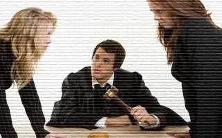 Раздел наследства в суде: как разделить имущество при отсутствии согласия между наследниками