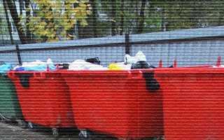 Твердые коммунальные (бытовые) отходы — какие установлены нормативы накопления