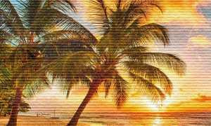 Кому и насколько дней могут предоставить дополнительный оплачиваемый отпуск