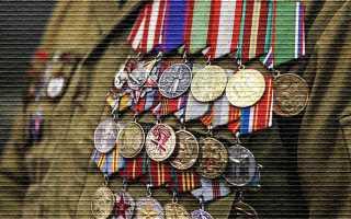 Положен ли земельный участок ветерану боевых действий