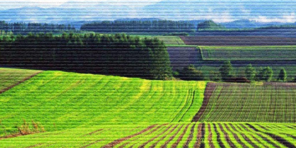 Аренда земли для бизнеса - картинка