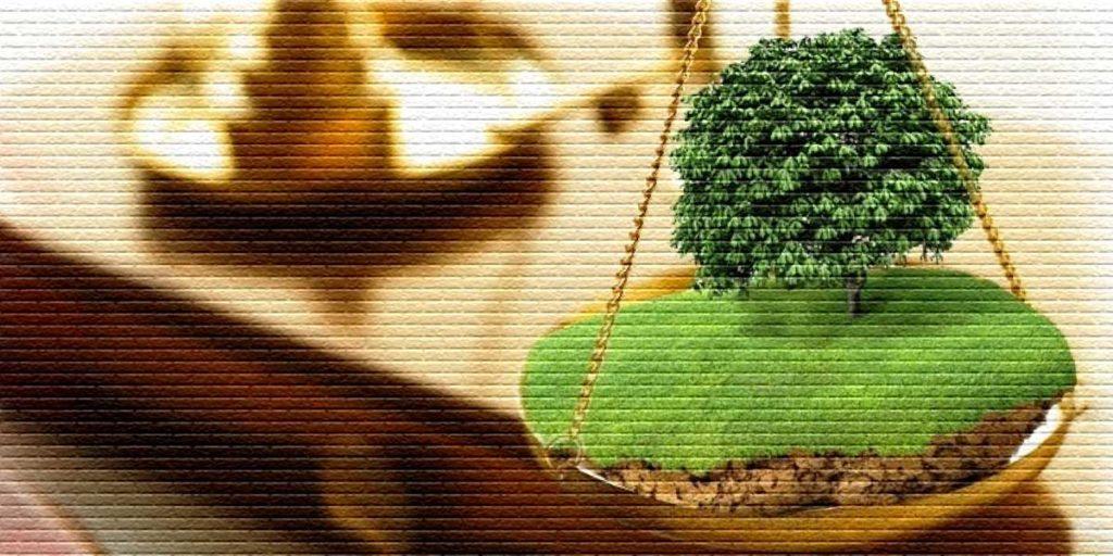 Порядок пользования земельным участком - картинка