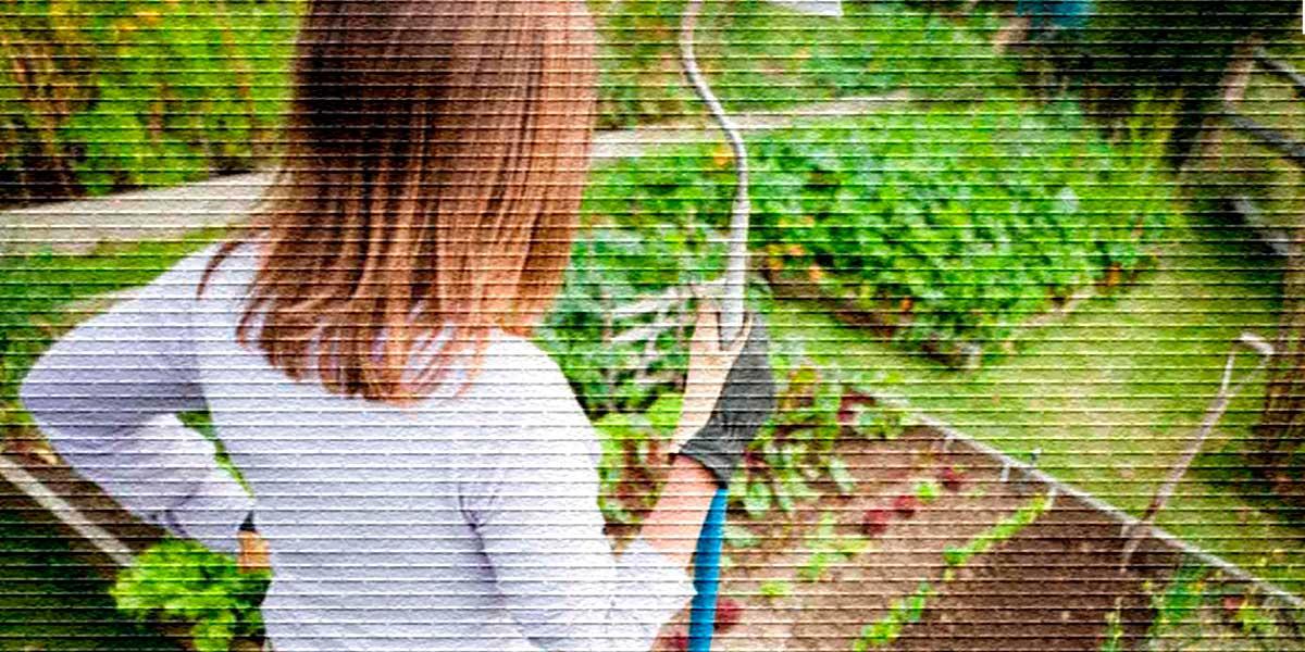 Хозяйка в огороде