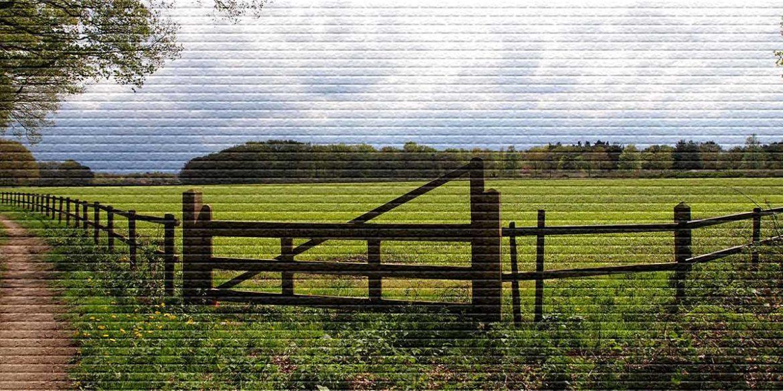 Приватизация земли в аренде - картинка