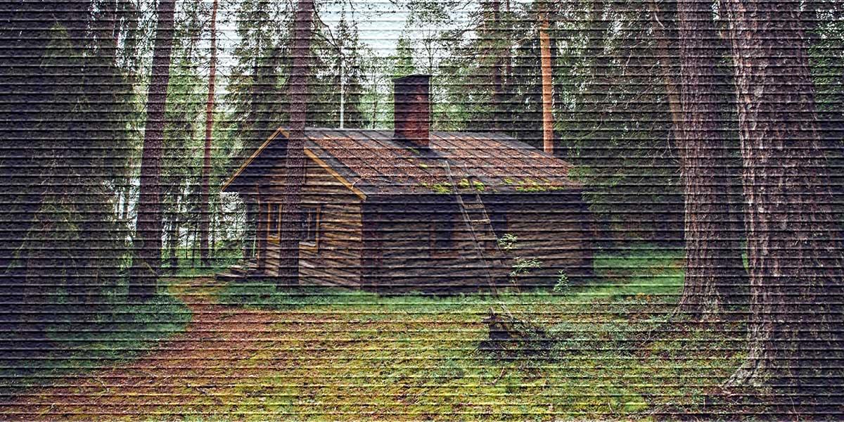 Что такое самовольное занятие земельного участка, ответственность и последствия
