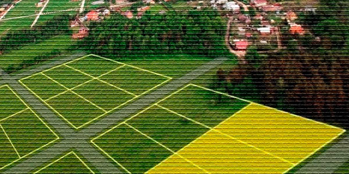 Статусы земельного участка: что значит кадастровый, временный и ранее учтенный статус земельного участка