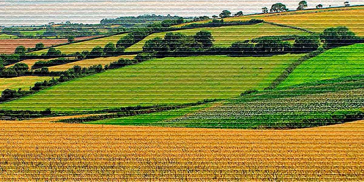 Форма договора субаренды земельного участка