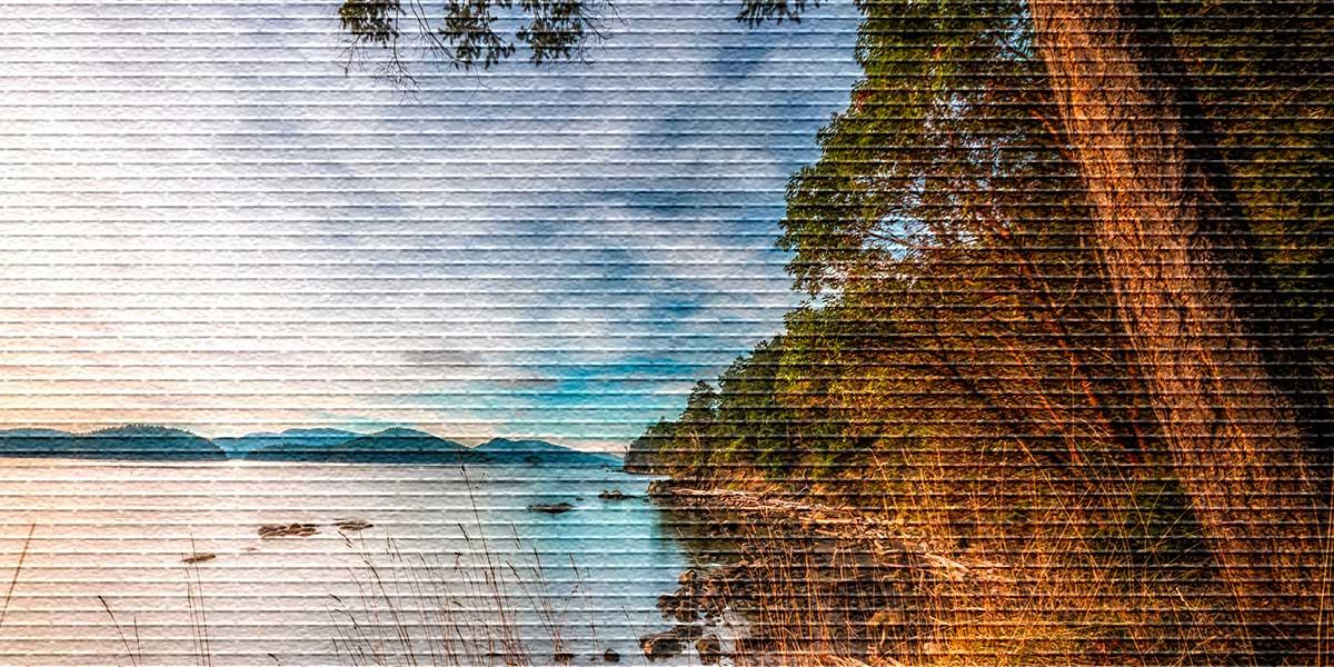 Особенности правового режима земель водного фонда и их состав
